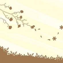나무자전거 그래픽스티커[kz] 코너형 양면 연결스티커_봄의눈_215, 나무자전거